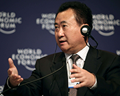 王健林:我是商人 赚钱是第一位的