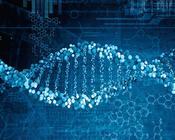 云南白药:可复制的商业基因