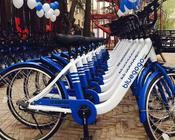 """小蓝单车真的是因为""""老大和老二打架""""累及无辜了?"""