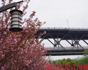 记者手记 | 武汉 等待春暖花开